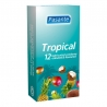 Pasante Tropical 12 uds.